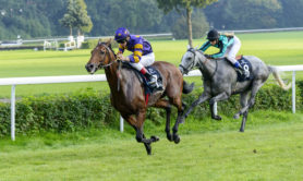 "Wroclaw, Poland - September 7, 2014: ""Rutena Award"" - International race for 3-year-old and older horses in Wroclaw. ""Big races in Wroclaw"" is an annual race on the Partenice track open to the public."