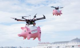 The Marathon Bet pigs were flown into the sky using drones